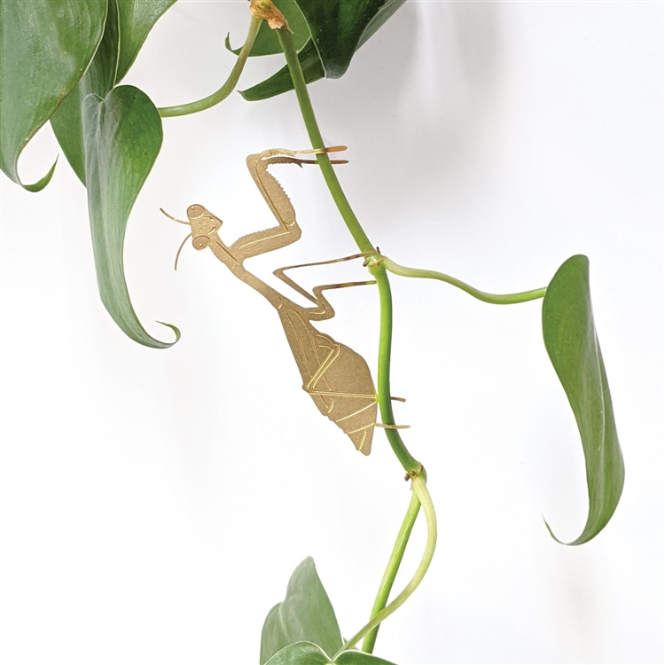Brass Plant Animals / Praying Mantis